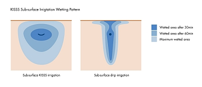 KISSS wetting pattern wets the entire root zone compared to sub-surface drip